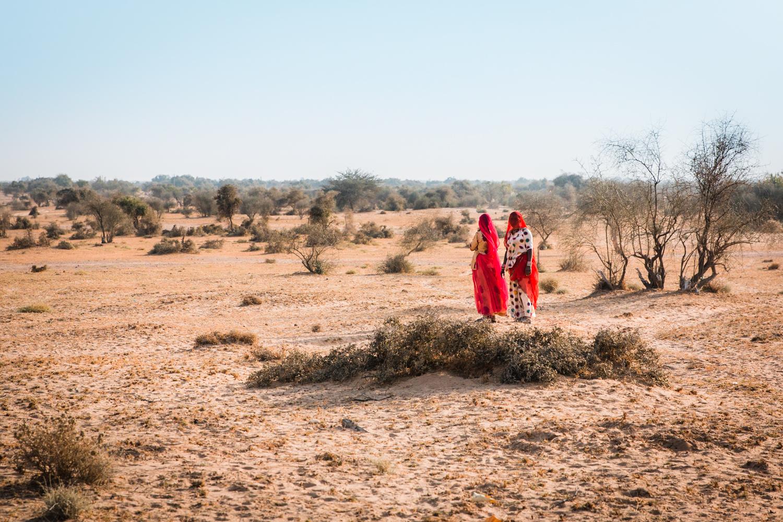 the serai jaisalmer